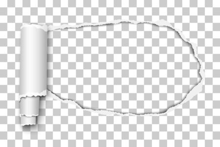 Oblong snatched hole in transparent sheet of paper with paper curl. Vector paper template. Vettoriali