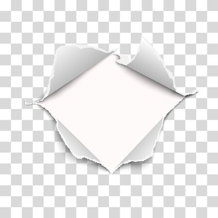 Snatched middle of vector transparent paper with torn edges, soft shadow and empty space. Damaged sheet with white background for ad and other aims. Template paper design.