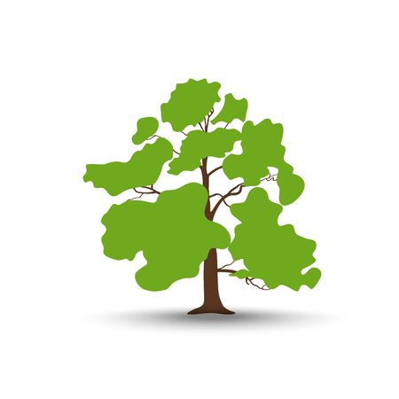 Oak tree icon. Vector illustration.