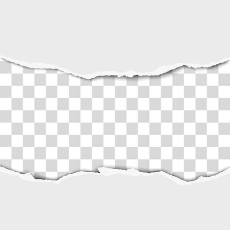 Torn middle of white paper with white background under it. Vector template paper design.  イラスト・ベクター素材
