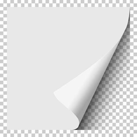 Sheet of white paper with curled corner, soft shadow and transparent next page. Element with space for text, ad and other aims. Template paper design. Vector illustration. Illustration