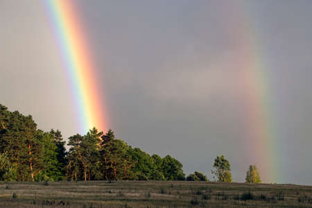 Rainbow over the forest. Agricultural landscape in eastern Lithuania.