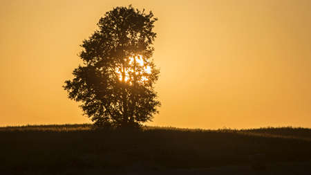 Sunset over the fields. Agricultural landscape in eastern Lithuania. Banco de Imagens