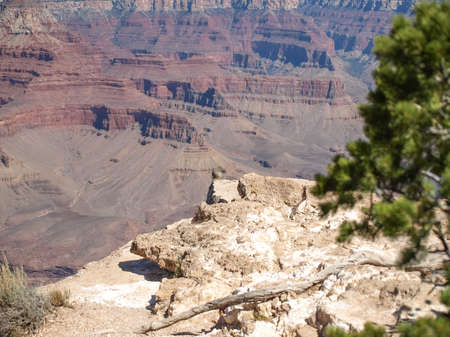 paria canyon: The Grand Canyon. Views of the canyon, the landscape and nature.