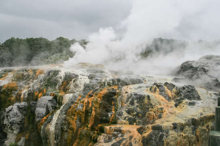 New Zealand steam geysers. New Zealand landscapes