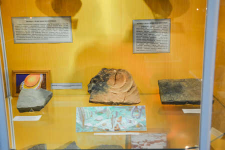 Geological Museum named after Vernadsky, Moscow, Russia - June 11, 2018: Exhibits of the Museum named after Vernadsky in Moscow, Fossil remains of ancient animals and plants.