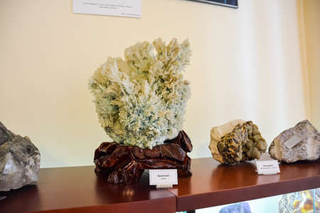 Geological Museum named after Vernadsky, Moscow, Russia - June 11, 2018: Exhibits of the Museum named after Vernadsky in Moscow, the exhibition presents minerals and fossils of the animal and plant world