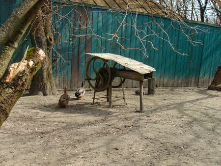 Abandoned area in Pripyat, Abandoned buildings and objects as a result of the Chernobyl nuclear accident