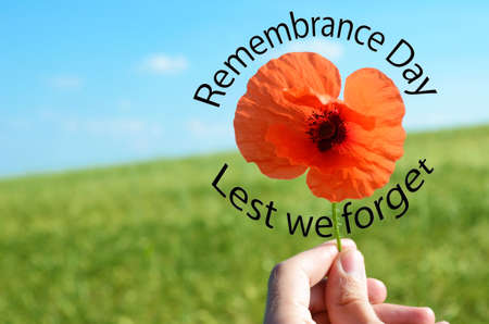 armistice: Poppy flower with the words Remembrance day. Lest we forget Stock Photo