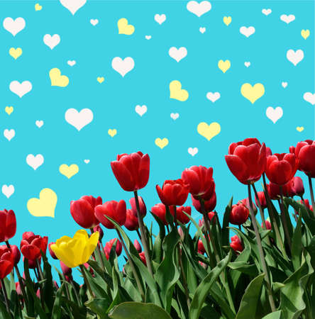 abstrakt: Abstrakt background with tulips for greeting with a Happy Valentine (March 8, February 14)