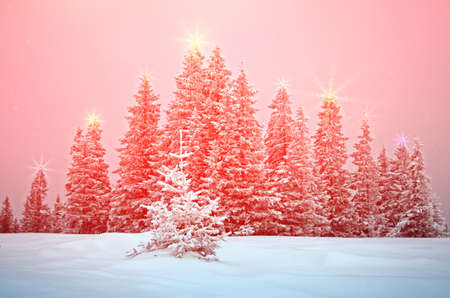 Mystical winter landscape with trees at Christmas lights shine (New Year, travel, Harmony - concept) Stock Photo