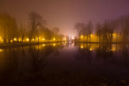 Mystical landscape with trees near the pond in misty autumn evening