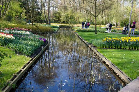Beautiful spring landscape with flowers and a lake in the park Keukenhof, Holland, Europe.