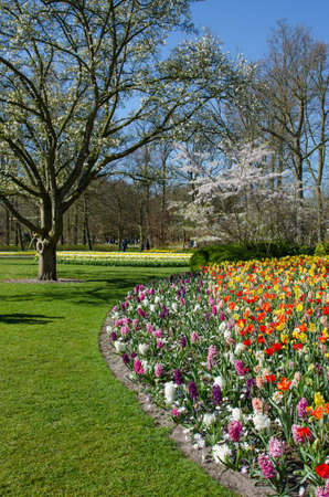 Amazing landscape with colorful flower beds and flower patterns in the park Keukenhof, Holland, Europe.
