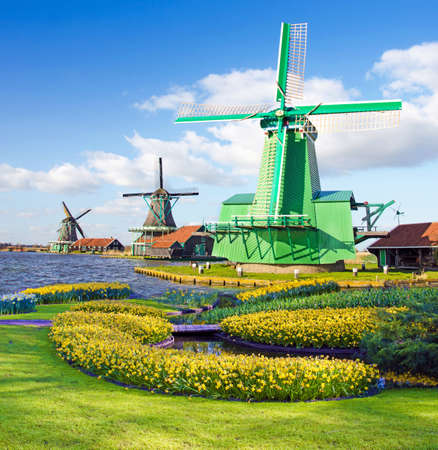 Magic spring landscape with flower beds and flower patterns windmills in Zaanse Schans Netherlands, Europe (harmony, relaxation, anti-stress, meditation - concept). Stock Photo