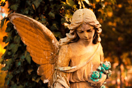 The figure of an angel in – symbol of love, invisible forces, purity, enlightenment, ministry. Chariot.