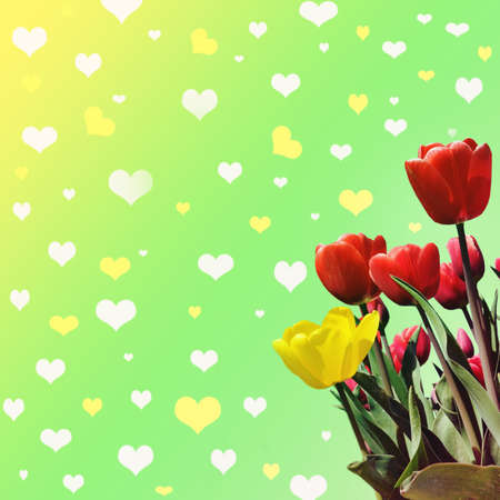 Abstrakt background with tulips for greeting with a Happy Valentine (March 8, February 14).