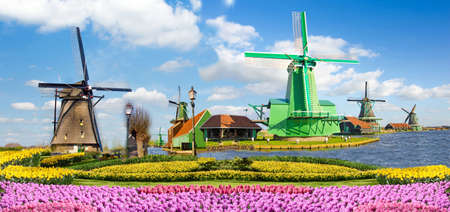 Incredibly beautiful cauliflower spring landscape with flowers and air Mill in Holland, Europe (harmony, relaxation, anti-stress, meditation - concept). Stock Photo
