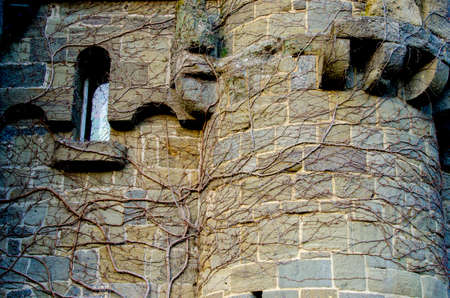 Mystical abstract image with window of an ancient castle with branches on the walls (Halloween, October 31 - concept)