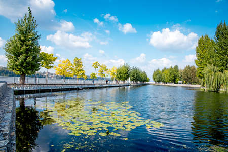 Charming beautiful autumn landscape with lavender on the lake in the park of Ternopil, Ukraine. amazing places. popular tourist atraction 版權商用圖片