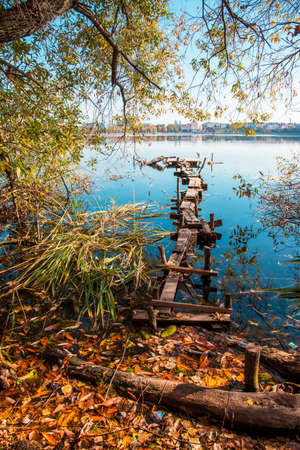 Magic charming autumn landscape with a wooden path to the lake and a mystical tree and the leaves fall at dawn (meditation, relaxation - concept)