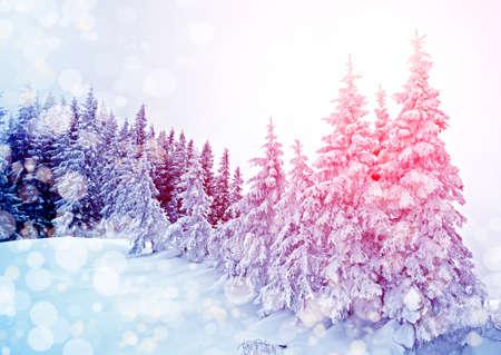 Beautiful winter landscape with fog in the Carpathian mountains, Ukraine Stock Photo