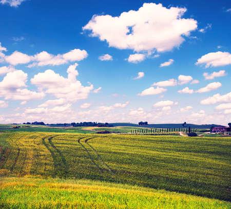 faszinierend schöne Magnetismus-Landschaft mit Spuren von Rädern auf Hügeln gegen Wolken in der Toskana, Italien. Ausgezeichnete touristische Orte.