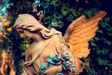 A fragment of ancient sculpture angel in a golden glow in the old cemetery. Symbol of love, invisible forces, purity, enlightenment, ministry. Chariot. Stok Fotoğraf