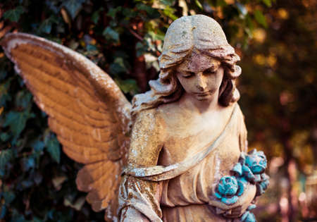A fragment of ancient sculpture angel in a golden glow in the old cemetery. Symbol of love, invisible forces, purity, enlightenment, ministry. Chariot. Retro vintage style. Stok Fotoğraf