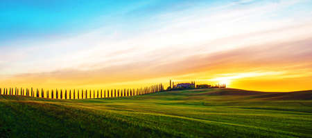 Beautiful magical landscape with a field and a line of cypress in Tuscany, Italy at sunrise Stok Fotoğraf