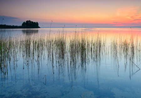 Untouched Nature by Lake Muritz at Sunrise, Germany Stock Photo