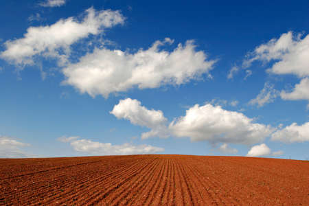 Plowed Field under Blue Sky with Clouds Фото со стока
