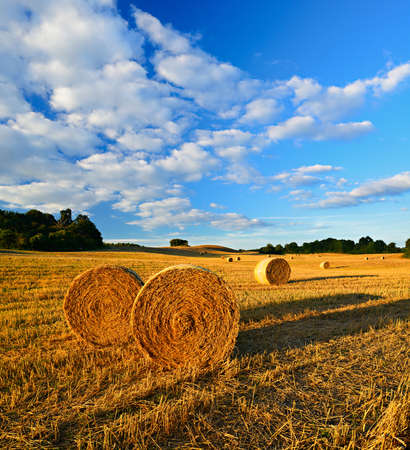 Summer Landscape, Bales of Straw at Stubble Field during Harvest