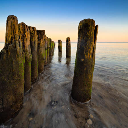 Beach with Wooden Groyne before sunrise, Darss peninsula, Germany Stock fotó
