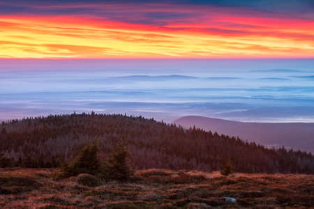 Glorious Sunrise on Mount Brocken view over endless Forest, morning fog, Harz National Park, Germany