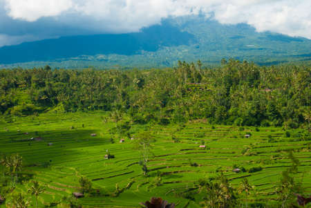 broken hill: Not far from Besakih, is located the village of Rendang, which offer divine views of mount Agung and broken rice terraces here at his hill. Indonesia, Bali. Stock Photo