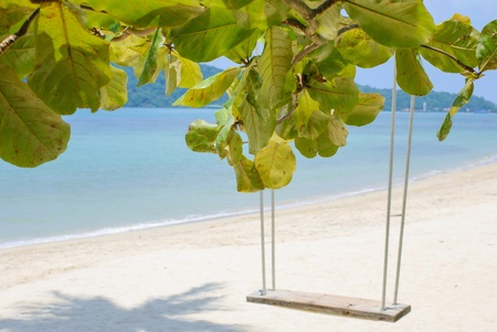 swing set: The branches of the tree on the background of the swing set and the sand on the beach of the island Koh Chang in Thailand