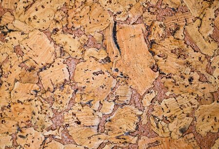 coverings: The structure of cork coverings