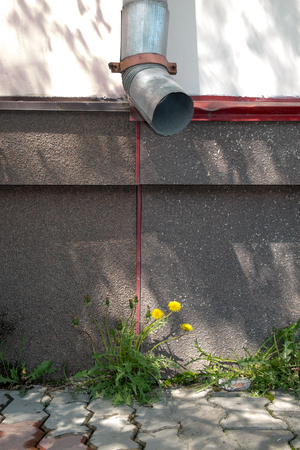 drain: Flower and drain pipe