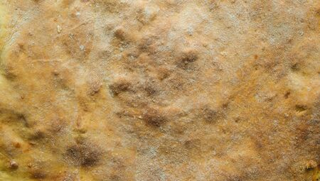 crust: crust fresh apple pie closeup
