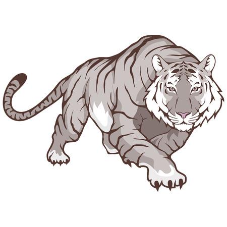 Witte tijger Stockfoto - 94757031