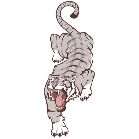 Tigre aislado sobre fondo blanco, ilustración en color, adecuado como logotipo o mascota del equipo. Tigre de Bengala. Logos