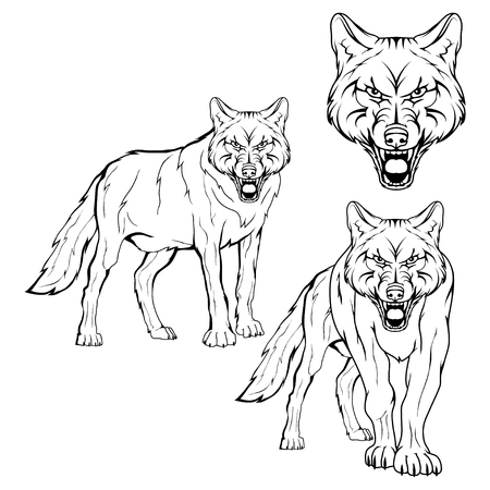 Wolf set. Vector sketch of a wolf. Business sign logotype wolf face. Sketch of a tattoo wolf.