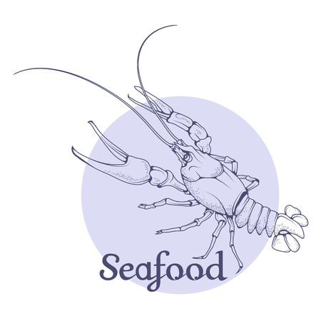 Seafood vector icon. Lobster isolated on white background. Ocean delicacies collection. Иллюстрация