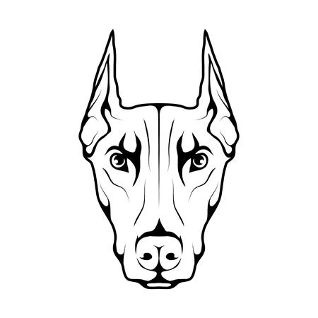 Doberman dog icon  isolated on plain background.