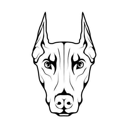 Doberman dog icon  isolated on plain background.
