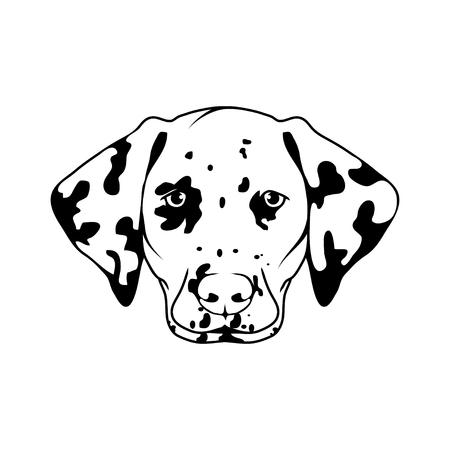 Dalmatian dog head icon dog collection Vettoriali