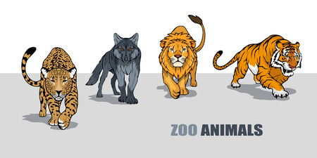 Set of ZOO. Concept with zoo animals.