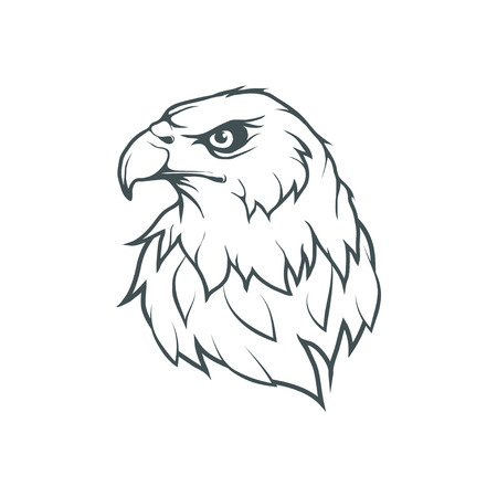 Eagle head, hand drawn Illustration.