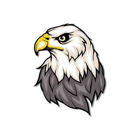 Bald eagle icon. Wild birds drawing. Head of an eagle. Vector graphics to design.